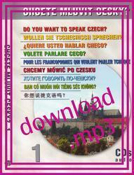 ¿QUIERE USTED HABLAR CHECO? - audio recording (mp3)